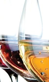 Wine Tasting at the Wine Vault, Palm Springs – Feb 12th, 2014